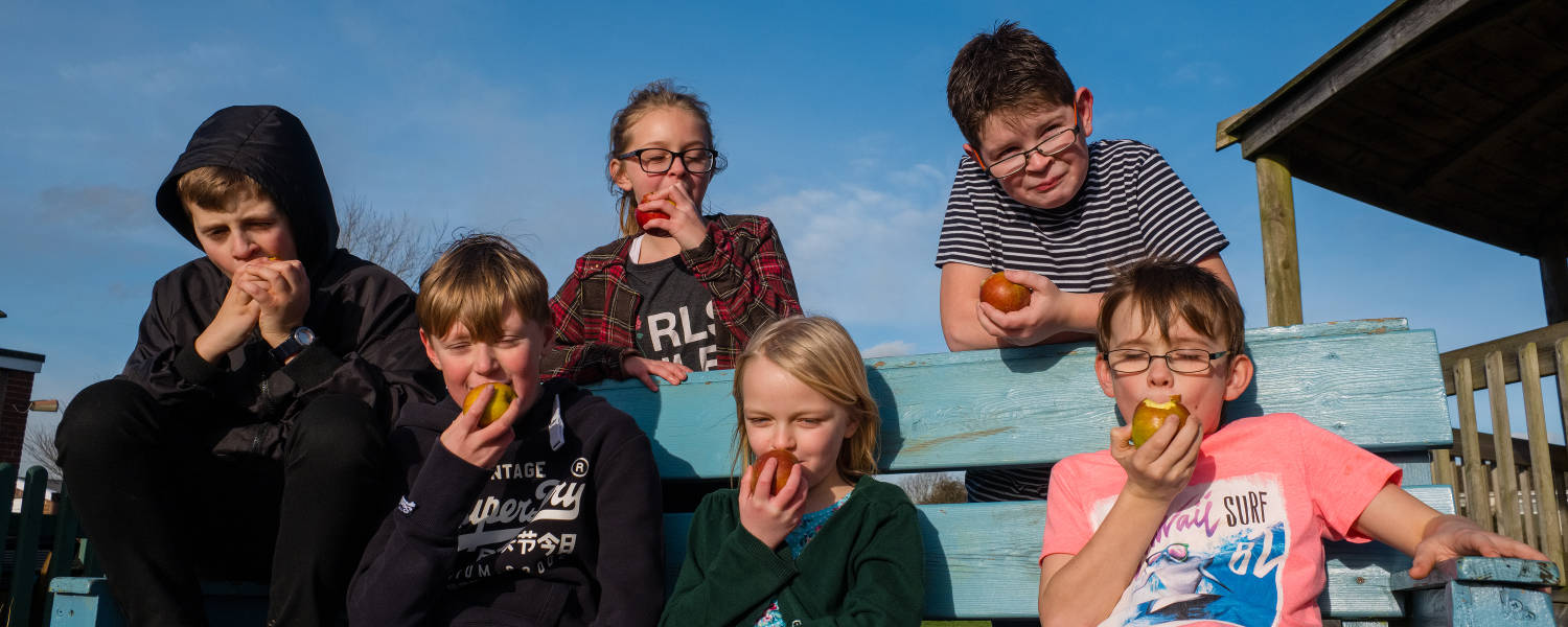 A group of children eating apples